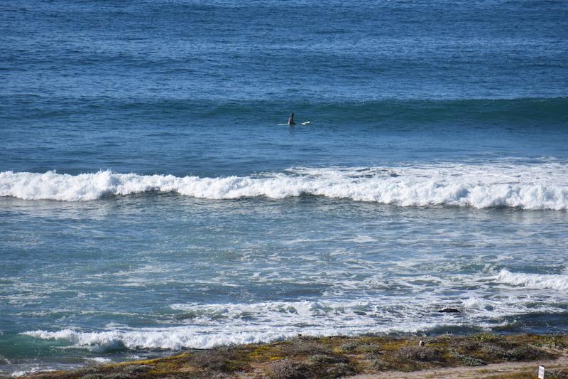 PlayasPacificasSurfing
